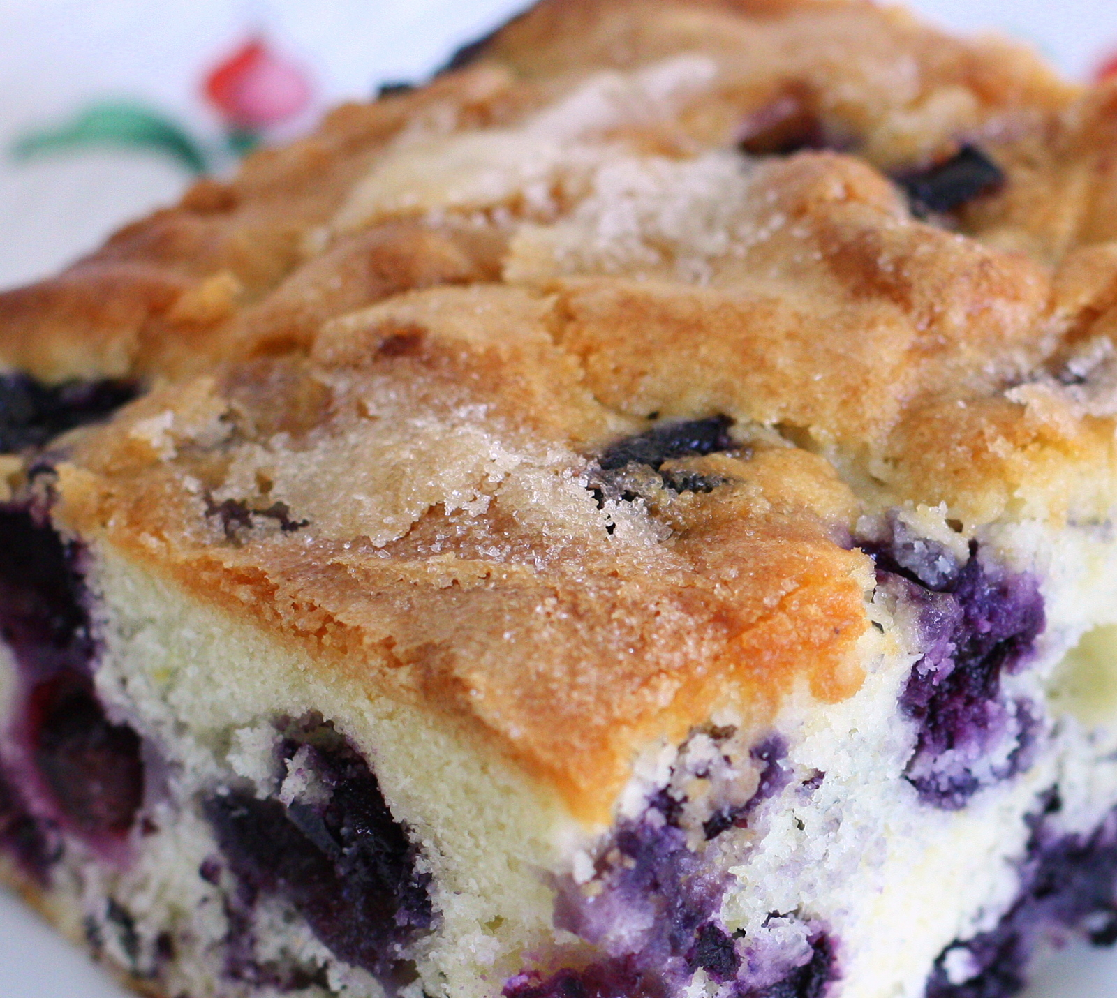 Blueberry Breakfast Cake | savage taste